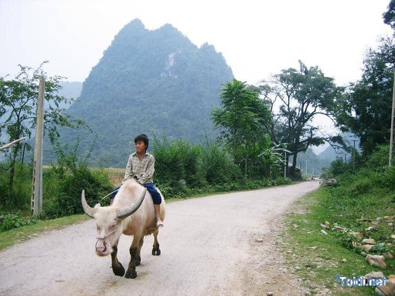 Phong Cảnh Cao Bằng
