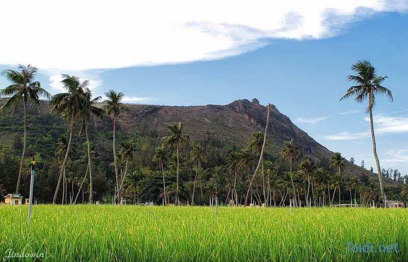 Phuot Ly Son Du lịch Đảo Lý Sơn