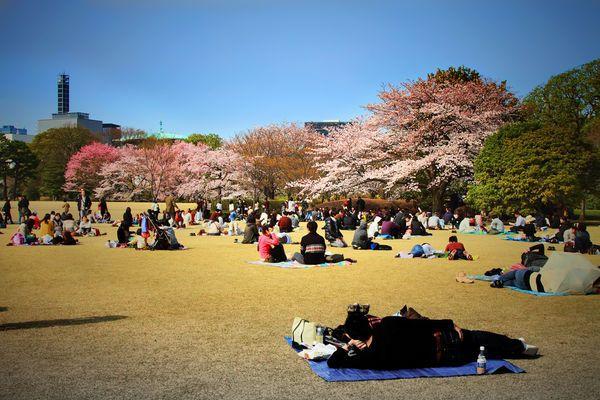 cong vien hoang gia tokyo