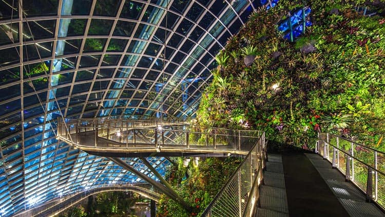 cloud-forest-singapore-garden