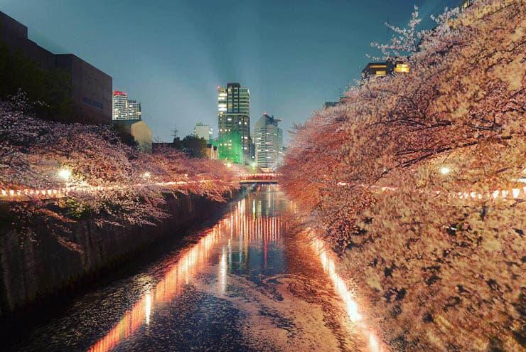 meguro-river-2
