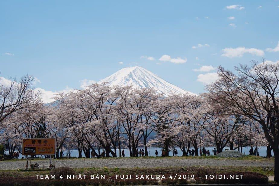 NÚI PHÚ SĨ – Tại Sao lại Được chọn là Biểu Tượng Của Nhật Bản